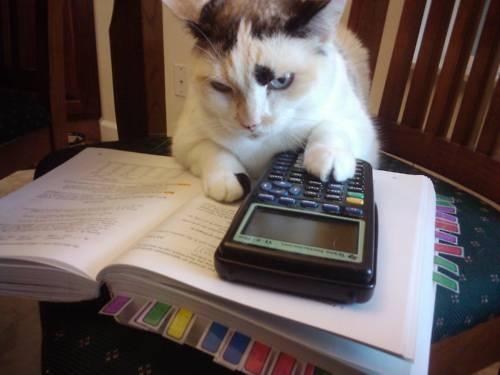 Math-Fail-Pics-347