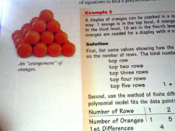 Math book pun