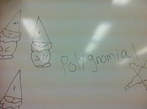 Polygnomial