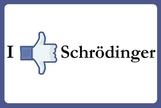 funny-like-hand-Schrodinger
