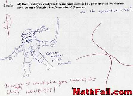 Ninja Turtle Math Test Fail