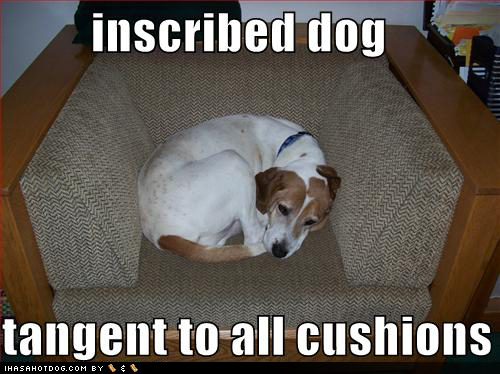 inscribed-dog.jpg