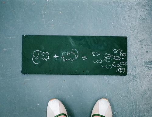 rats-formula.jpg