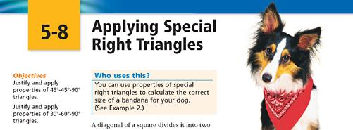 special-triangle-application.jpg