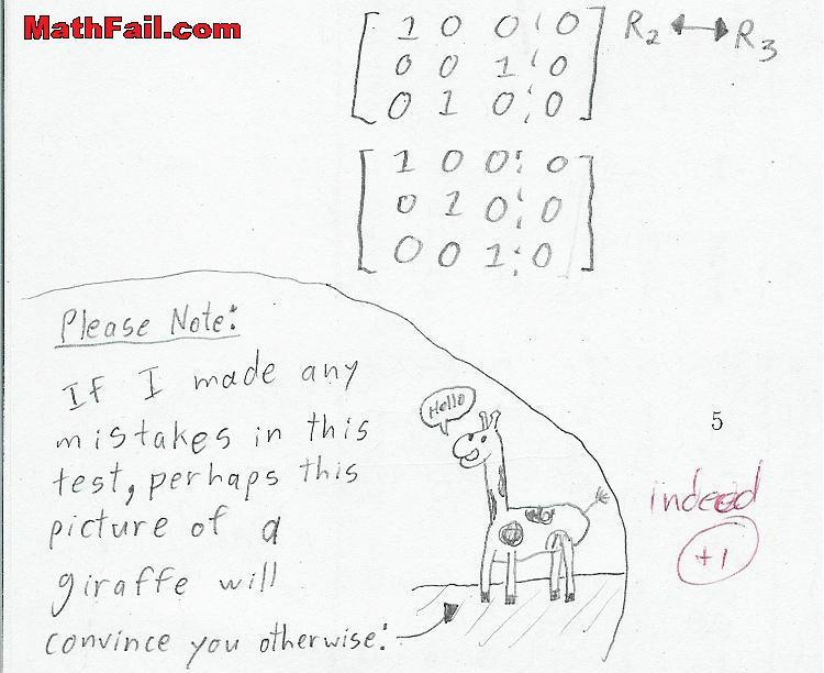 linear algebra test and giraffe picture
